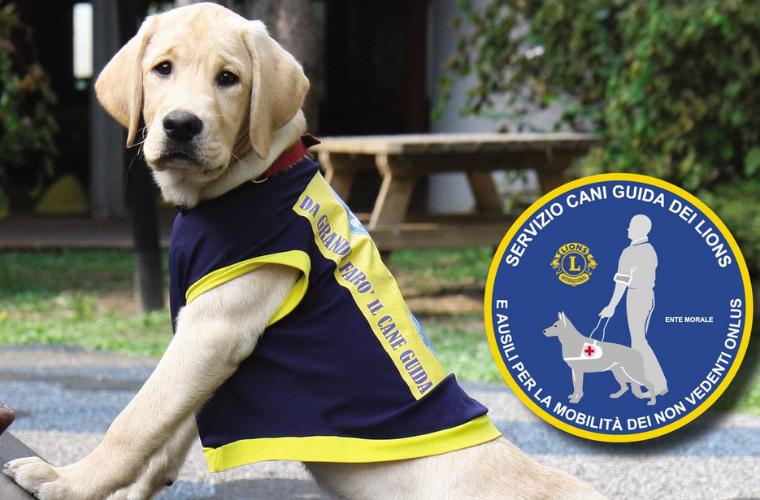 Adriatico2 dona un cane guida addestrato ad un non vedente